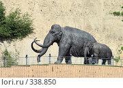 Купить «Мамонты-самка и детёныш», фото № 338850, снято 23 июня 2008 г. (c) Круглов Олег / Фотобанк Лори