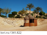 Беседка в пальмах и песке (2007 год). Стоковое фото, фотограф Ирина Доронина / Фотобанк Лори