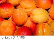 Купить «Сочные абрикосы», фото № 344106, снято 2 июля 2008 г. (c) Андрей Бурдюков / Фотобанк Лори