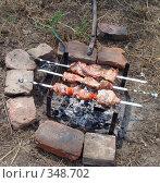 Купить «Приготовление шашлыка на мангале», фото № 348702, снято 6 июля 2008 г. (c) Игорь Муртазин / Фотобанк Лори