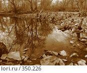 Купить «Водный пейзаж, сепия», фото № 350226, снято 17 апреля 2007 г. (c) Талдыкин Юрий / Фотобанк Лори