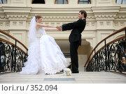 Купить «Свадьба. Молодожены», фото № 352094, снято 19 августа 2018 г. (c) Losevsky Pavel / Фотобанк Лори