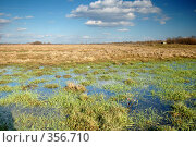 Купить «Весенний заливной луг», фото № 356710, снято 16 августа 2018 г. (c) Олег / Фотобанк Лори