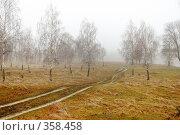 Купить «Поздняя осень», фото № 358458, снято 16 августа 2018 г. (c) Олег / Фотобанк Лори