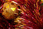 Новогодние украшения, фото № 359882, снято 13 ноября 2004 г. (c) Кравецкий Геннадий / Фотобанк Лори
