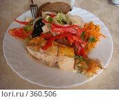 Купить «Обед: мясо с овощами», фото № 360506, снято 24 июня 2008 г. (c) Евгения Лаврова / Фотобанк Лори