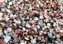 Дары моря (множество маленьких ракушек), фото № 362834, снято 18 июля 2008 г. (c) Татьяна Баранова / Фотобанк Лори