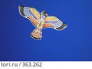 Купить «Воздушный змей», фото № 363262, снято 12 июля 2008 г. (c) Наталья Волкова / Фотобанк Лори