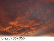 Купить «Небесные пейзажи», фото № 367950, снято 22 июля 2008 г. (c) Владимир Тимошенко / Фотобанк Лори