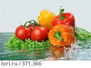 Купить «Овощное ассорти в  воде», фото № 371366, снято 23 июля 2008 г. (c) Igor Lijashkov / Фотобанк Лори