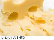 Купить «Свежий сыр на белом фоне», фото № 371486, снято 20 мая 2019 г. (c) Мельников Дмитрий / Фотобанк Лори