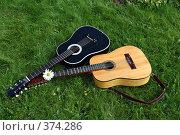 Купить «12-струнная и 6-струнная гитары на зеленой лужайке», фото № 374286, снято 2 апреля 2005 г. (c) Ольга Дроздова / Фотобанк Лори