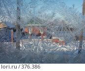 Купить «Ледяной рисунок», фото № 376386, снято 1 января 2006 г. (c) Алексей Стоянов / Фотобанк Лори