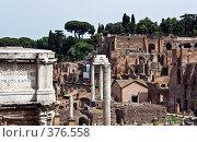 Купить «Руины римского форума. Италия», фото № 376558, снято 24 июня 2007 г. (c) Павел Коновалов / Фотобанк Лори