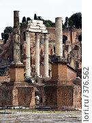 Купить «Руины римского форума. Италия», фото № 376562, снято 24 июня 2007 г. (c) Павел Коновалов / Фотобанк Лори
