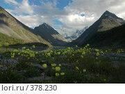 Купить «У подножья Белухи», фото № 378230, снято 26 июня 2008 г. (c) Абдурагимова Наталия / Фотобанк Лори