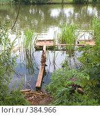 Город Тамбов. Утки на реке Цна. (2008 год). Стоковое фото, фотограф Валерий Ситников / Фотобанк Лори