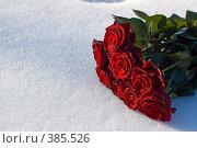 Купить «Букет красных роз на снегу», фото № 385526, снято 29 марта 2008 г. (c) Денис Лосев / Фотобанк Лори