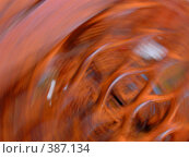 Купить «Абстракция закрученная, красно-оранжевая», фото № 387134, снято 28 июля 2008 г. (c) Татьяна Заварина / Фотобанк Лори