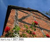 Стрэдфорд-на-Эйвоне. Англия. Стена средневекового дома. (2007 год). Стоковое фото, фотограф Светлана Кудрина / Фотобанк Лори