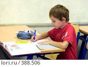 Купить «Первоклассник готовится к урокам в школе», фото № 388506, снято 19 августа 2007 г. (c) Татьяна Белова / Фотобанк Лори