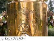 Купить «Город Углич. Медали на самоваре», фото № 388634, снято 26 июля 2008 г. (c) Юрий Синицын / Фотобанк Лори