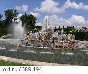 Купить «Фонтаны Версаля», фото № 389194, снято 3 июля 2005 г. (c) Вячеслав Смоленский / Фотобанк Лори