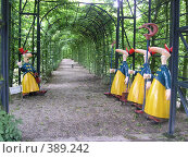 Купить «Длинноносые», фото № 389242, снято 6 августа 2005 г. (c) Вячеслав Смоленский / Фотобанк Лори