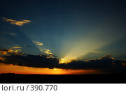 Купить «Закат», фото № 390770, снято 26 июля 2006 г. (c) Андрей Армягов / Фотобанк Лори