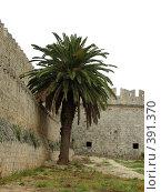 Купить «Родос. Стены старого города», фото № 391370, снято 14 мая 2008 г. (c) Хименков Николай / Фотобанк Лори