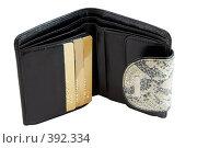 Купить «Бумажник», фото № 392334, снято 22 мая 2008 г. (c) Ivan Korolev / Фотобанк Лори
