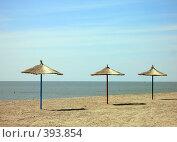 Купить «Зонтики на пляже», фото № 393854, снято 17 августа 2018 г. (c) Уфимцева Екатерина / Фотобанк Лори