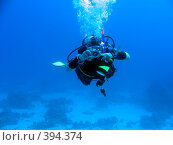 Купить «Подводный фотограф», фото № 394374, снято 31 декабря 2006 г. (c) Ольга Хорошунова / Фотобанк Лори