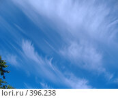 Купить «Облака», фото № 396238, снято 7 августа 2008 г. (c) maruta bekina / Фотобанк Лори