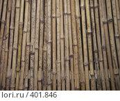 Купить «Фон, бамбук», фото № 401846, снято 13 августа 2008 г. (c) Алла Кригер / Фотобанк Лори