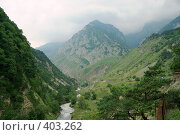 Купить «Долина реки Фиагдон. Северная Осетия», фото № 403262, снято 6 августа 2008 г. (c) ZitsArt / Фотобанк Лори