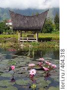 Купить «Беседка на берегу лотосового пруда, остров Самосир, озеро Тоба, Суматра», фото № 404318, снято 24 мая 2008 г. (c) Валерий Шанин / Фотобанк Лори