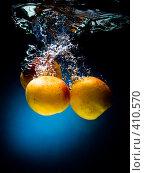 Купить «Свежие абрикосы в воде на черно-синем фоне с воздушными пузырьками», фото № 410570, снято 9 июля 2008 г. (c) Мельников Дмитрий / Фотобанк Лори