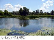 Купить «Северский Донец. Полдень», фото № 412602, снято 1 июля 2007 г. (c) Елена Яворова / Фотобанк Лори