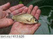 Купить «Карасик в руках рыбака», фото № 413626, снято 29 июля 2008 г. (c) Голофеева Галина / Фотобанк Лори