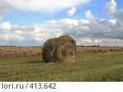 Купить «Стог сена», фото № 413642, снято 30 июля 2008 г. (c) Голофеева Галина / Фотобанк Лори