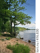 """Купить «Озеро """"Селигер"""" (о. Волго)», фото № 416830, снято 27 июля 2008 г. (c) Александр Секретарев / Фотобанк Лори"""