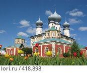 Тихвинский мужской монастырь (2008 год). Стоковое фото, фотограф Светлана Кудрина / Фотобанк Лори