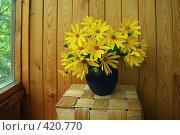 Купить «Желтые цветы в синей вазе на балконе», фото № 420770, снято 25 августа 2008 г. (c) Наталья Волкова / Фотобанк Лори