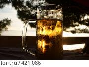 Купить «Кружка пива на фоне заходящего солнца», фото № 421086, снято 9 июня 2008 г. (c) Татьяна Кахилл / Фотобанк Лори