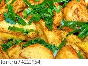 Купить «Блюдо из картофеля», фото № 422154, снято 12 августа 2008 г. (c) Марина Коробанова / Фотобанк Лори