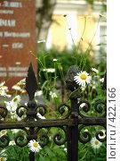 Купить «Цветы на могиле», фото № 422166, снято 3 июля 2008 г. (c) Омельян Светлана / Фотобанк Лори