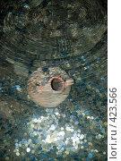 Купить «Сокровище», фото № 423566, снято 22 июля 2008 г. (c) Дмитрий Рогов / Фотобанк Лори