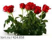 Купить «Букет красных роз на белом фоне», фото № 424858, снято 3 июня 2008 г. (c) Татьяна Белова / Фотобанк Лори