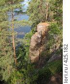 Купить «Валаамские сосны, скалистый берег», фото № 425182, снято 6 августа 2008 г. (c) Морковкин Терентий / Фотобанк Лори